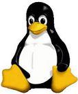 linux, web